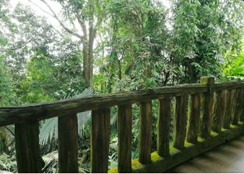 Fence in Krabi