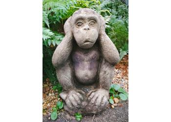 Ape do not hear motive