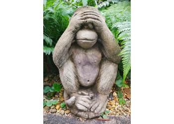 Ape do not see motive