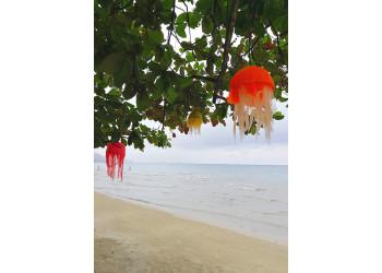 Beach decorations
